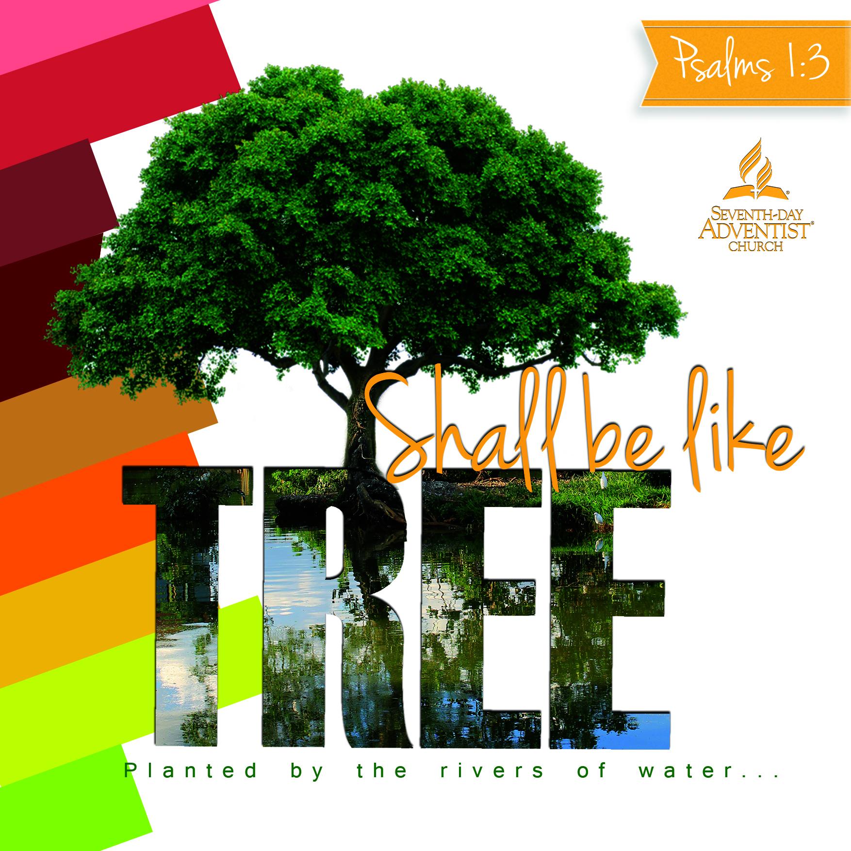 Square-150Pdi_web-tree